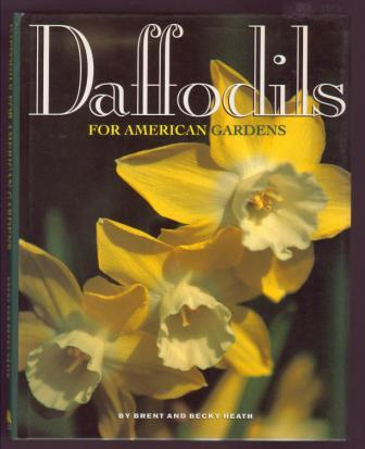 Image for Daffodils for American Gardens