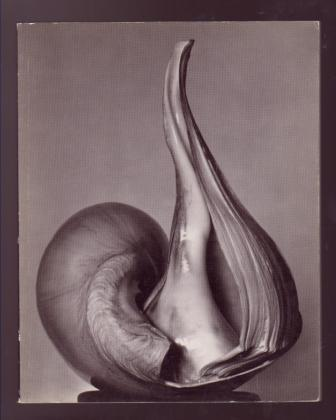 Image for EW:100 - Centennial Essays in Honor of Edward Weston