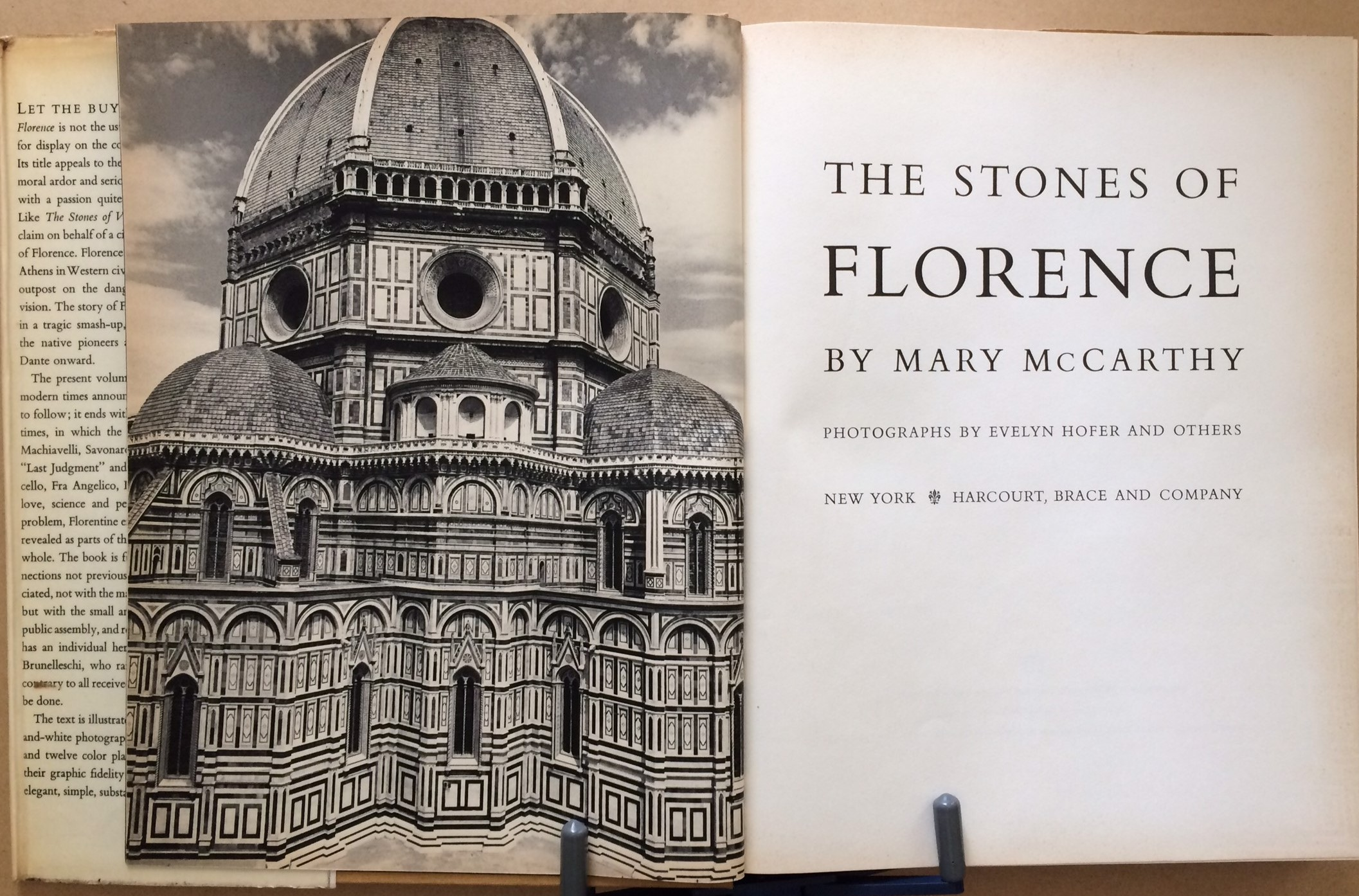 Image for The Stones of Florence