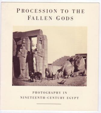 Image for Procession to the Fallen Gods: Photography in Nineteenth-Century Egypt