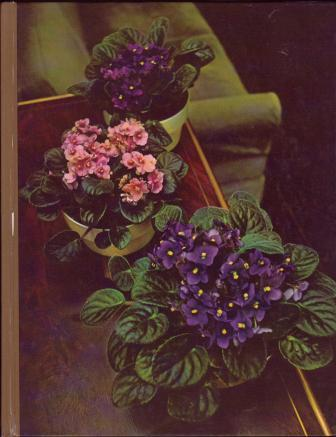 Image for Flowering House Plants